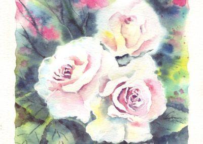 Roses n°3