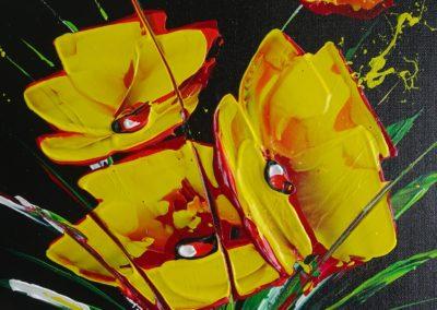 Fleurs d'artifice 1