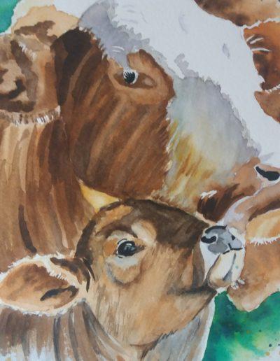 Famille bovine